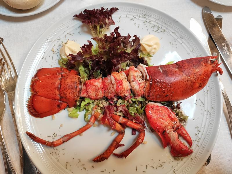 Lobster immagine stock