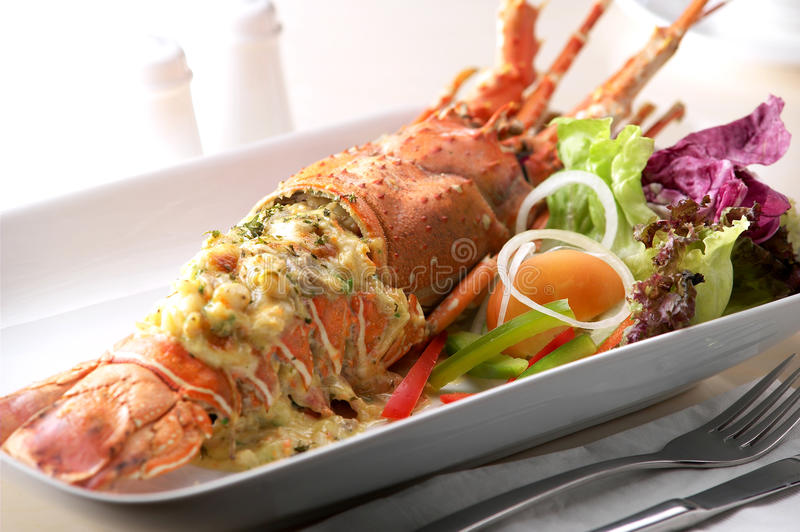 Lobster. Delicious lobster cheese ready to serve stock photography