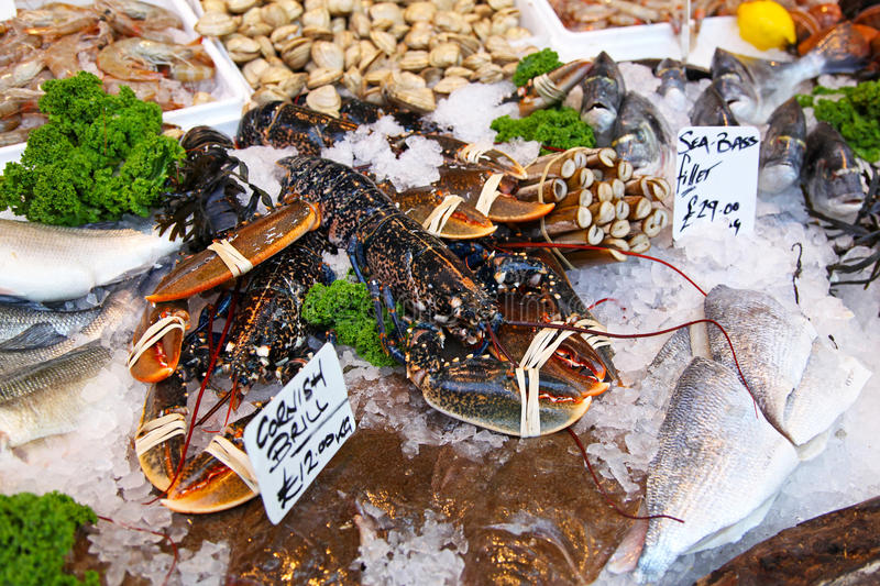 Download Lobster stock image. Image of fish, animal, shells, marine - 28330641