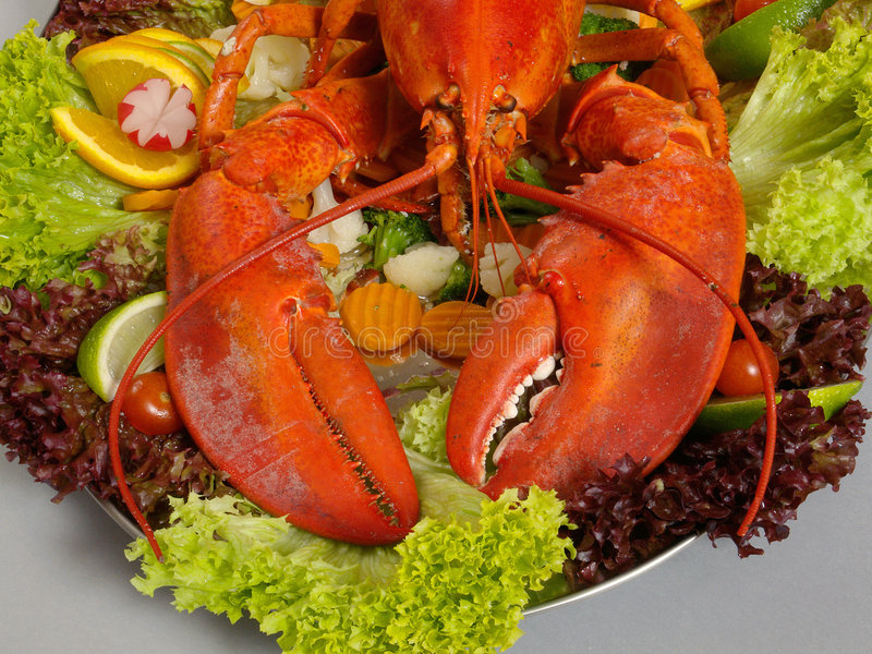 Download Lobster 3 stock image. Image of shell, cook, gastronomy - 6486057
