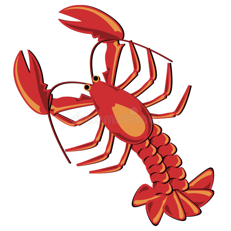 Lobster. Seafood. Shellfish. Lobster illustration isolated over white stock illustration