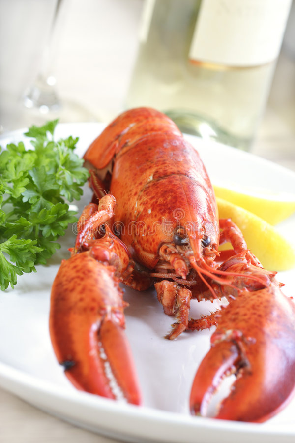 Free Lobster Royalty Free Stock Photography - 869577