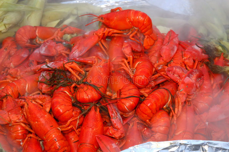 Download Lobster Bake Royalty Free Stock Photos - Image: 1295938