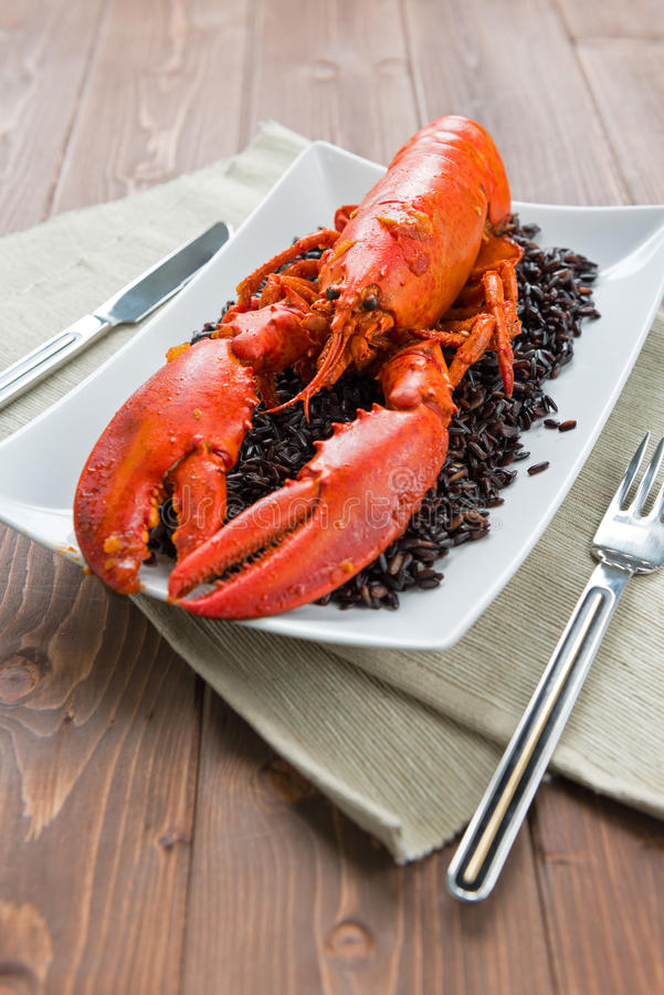 Download Lobster with black rice stock photo. Image of cereal - 28368206