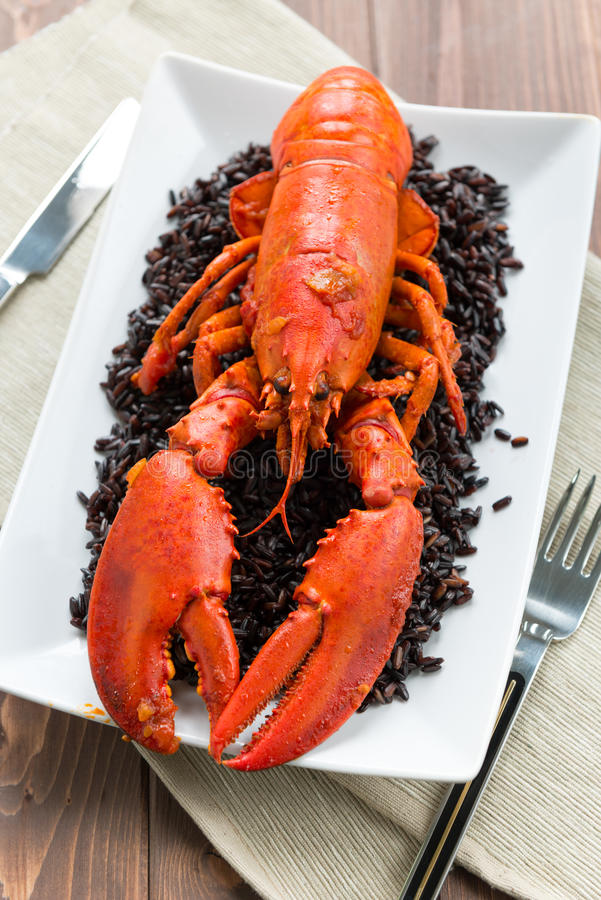 Download Lobster with black rice stock image. Image of feed, food - 28368259