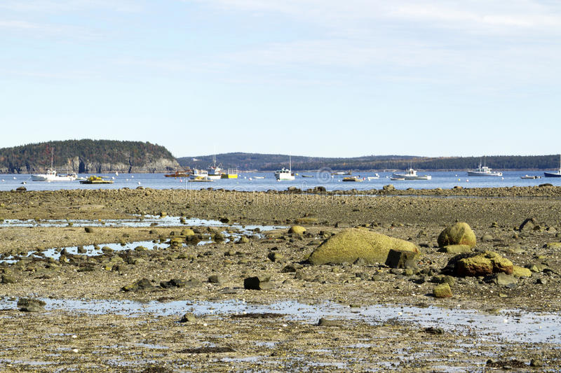 Download Lobster Boats In Harbor At Low Tide Stock Image - Image: 27474739