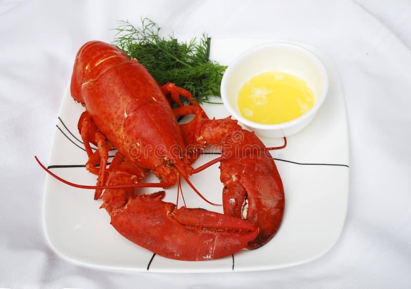 Lobster dinner stock image