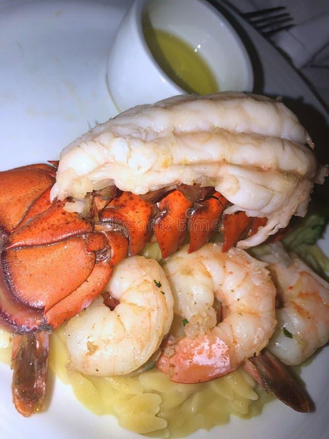 Lobster. Foodie lobster dish stock image