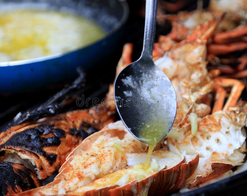 Lobster on the Grill. Tantalizing garlic and sauteed butter, roasted on an open fire with charcoal Briquettes royalty free stock photography