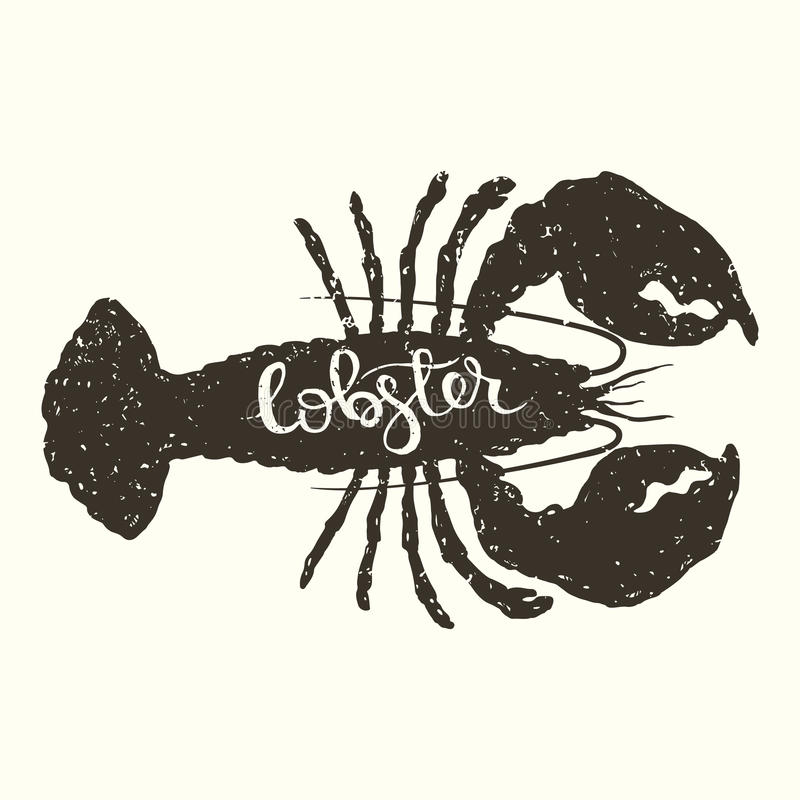 Lobster. Hand drawn graphic illustration of the lobster in engraving style with hand lettering inscription royalty free illustration