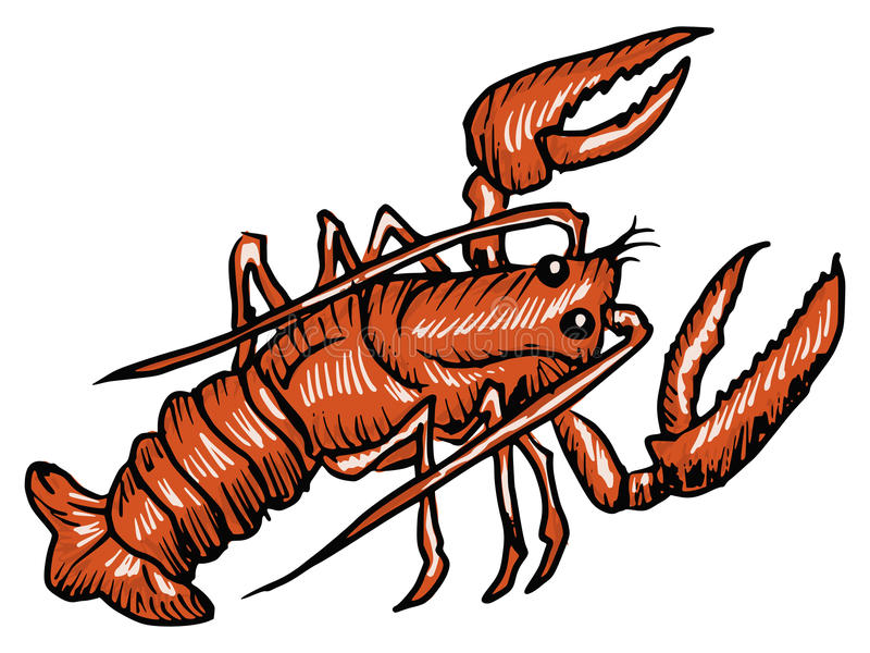 Lobster vector illustration