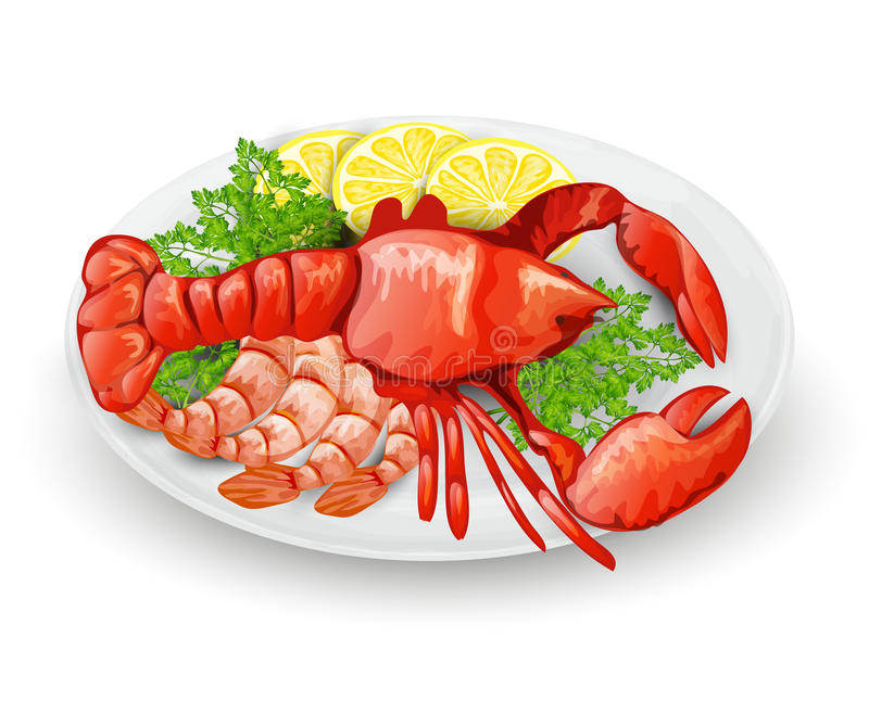 Lobster On Plate. With lemon shrimps and parsley seafood restaurant menu concept vector illustration vector illustration