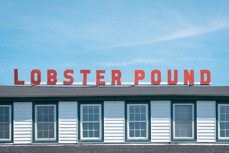 Lobster Pound, in Lincolnville, Maine royalty free stock photography