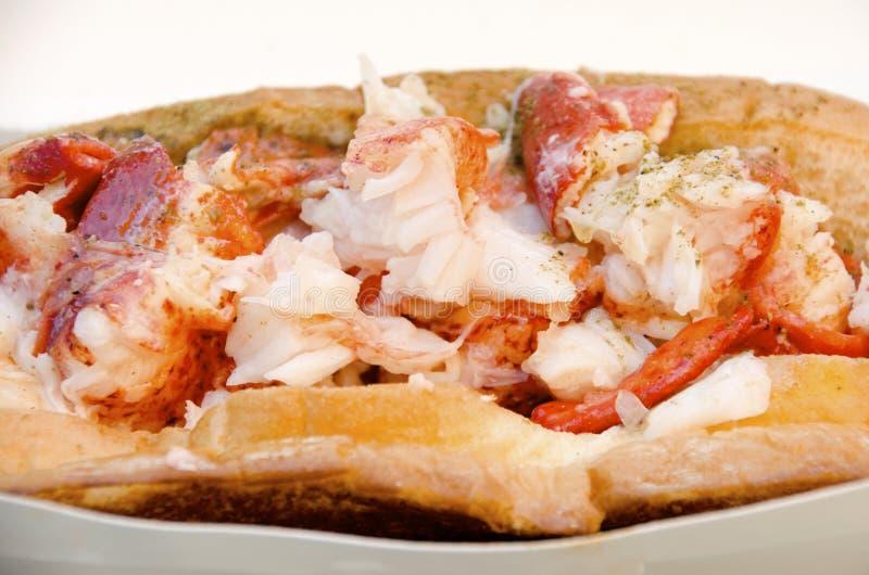 Lobster Roll stock photos