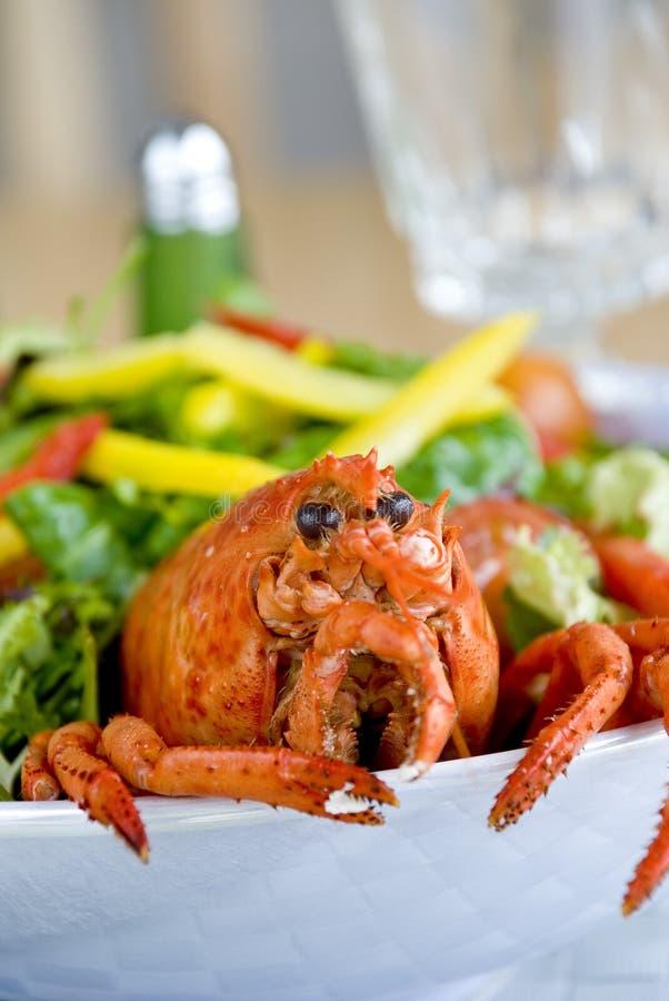 Free Lobster Salad Stock Photos - 12736583