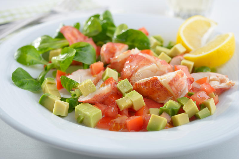 Lobster salad stock photo