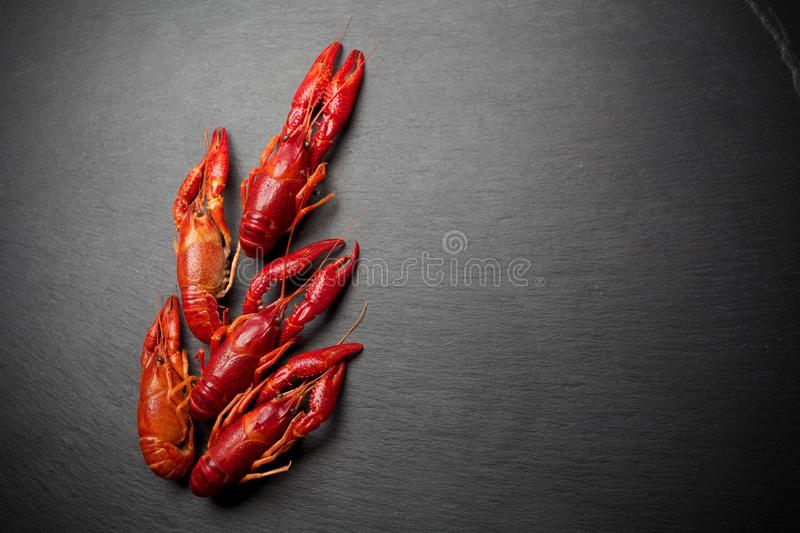 Lobster. Seafood. On a black slate background. Top view. Free space for your text. Lobster. Seafood. On a black background. Top view. Free space for your text royalty free stock photography