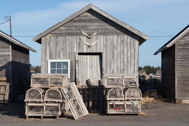 Lobster traps and fishing sheds royalty free stock photos