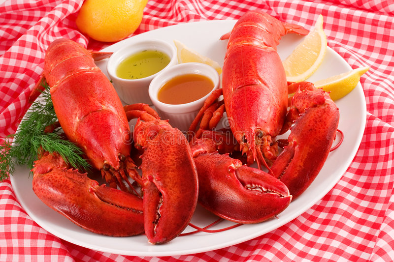 Lobsters stock image