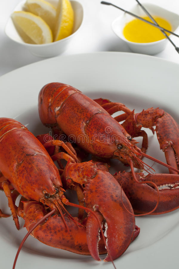 Lobsters platter stock photos