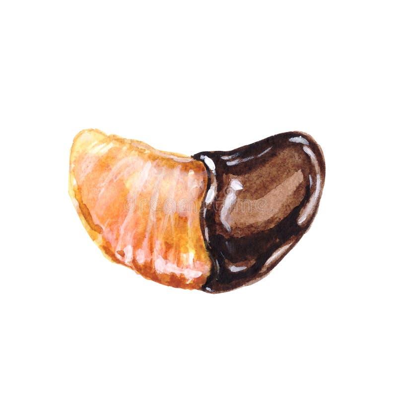 Lobulo del mandarino del dessert dell'illustrazione dell'acquerello in cioccolato illustrazione vettoriale