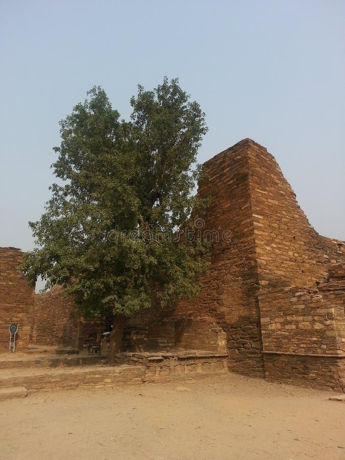 Local arqueológico de Takht-i-Bhai Parthian e monastério budista imagem de stock royalty free