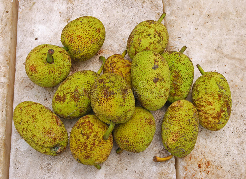 Local Breadfruit on Sale in Male Fruit and Vegetable Market royalty free stock images