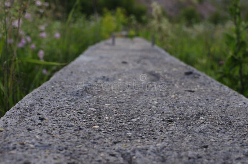 Local concreto abandonado da construção civil Laje de cimento da fundação de construção Rebar de aço de pilhas concretas, fundaçã fotografia de stock