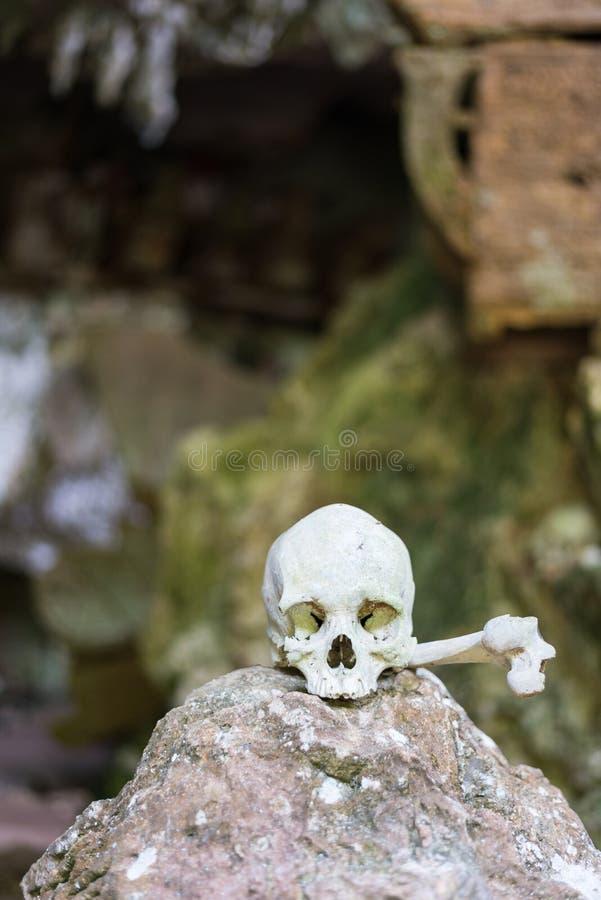 Local de enterro tradicional em Tana Toraja imagem de stock royalty free