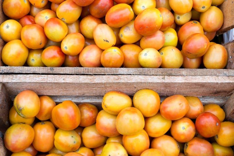 Local filipino tomato in the Philippines, closeup stock photo