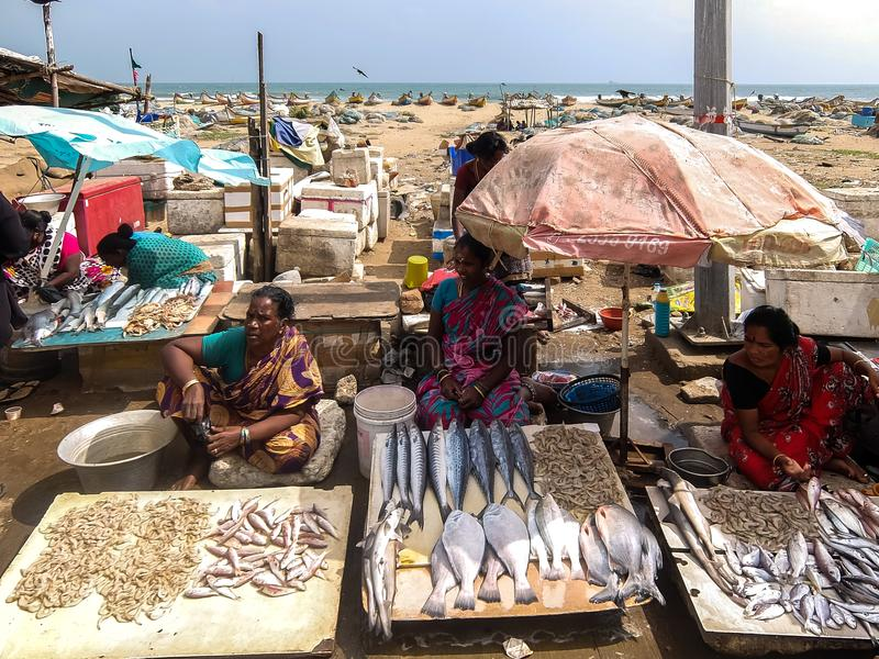Local fish market on the road near the beach in Chennai, India. Chennai, India - December, 24th, 2017. Local fish market on the road near the beach in Chennai stock image