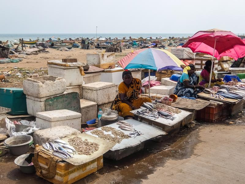 Local fish market on the road near the beach in Chennai, India. royalty free stock image