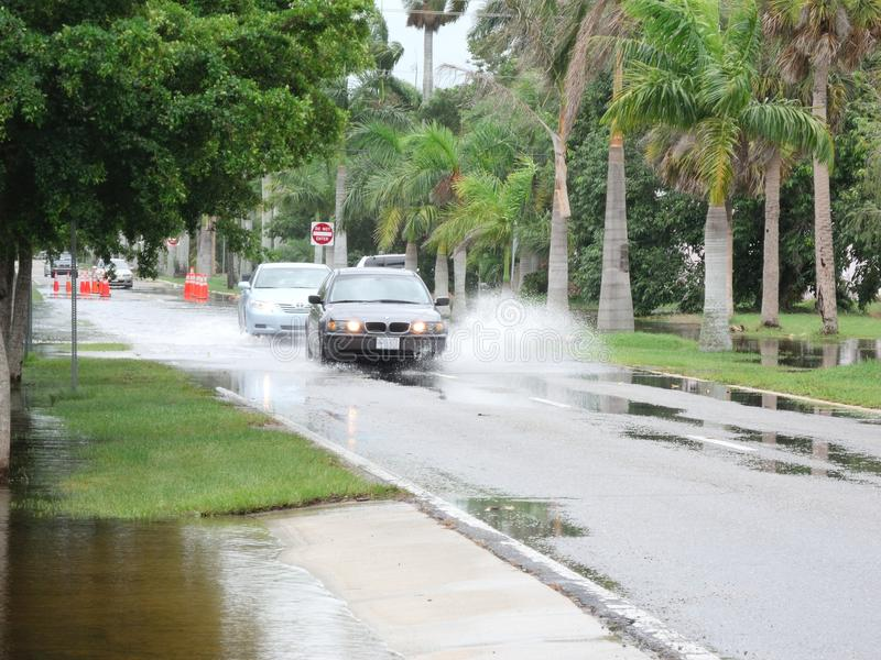 Local Flooding Hurricane Debby Editorial Stock Photo