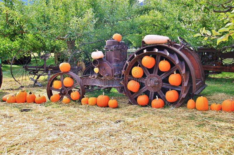 Local fruit shop, dealer in Princeton, British Columbia. Nice decoration with pumpkin, groud, fruits royalty free stock images