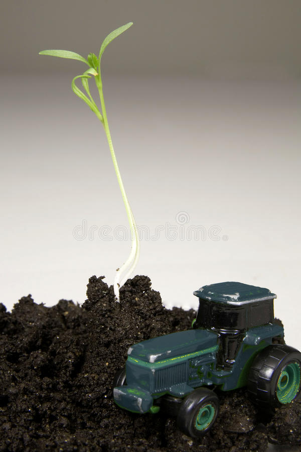 Download Local Harvest Concept, Plant Sprout, Toy Tractor Stock Photo - Image: 18102964