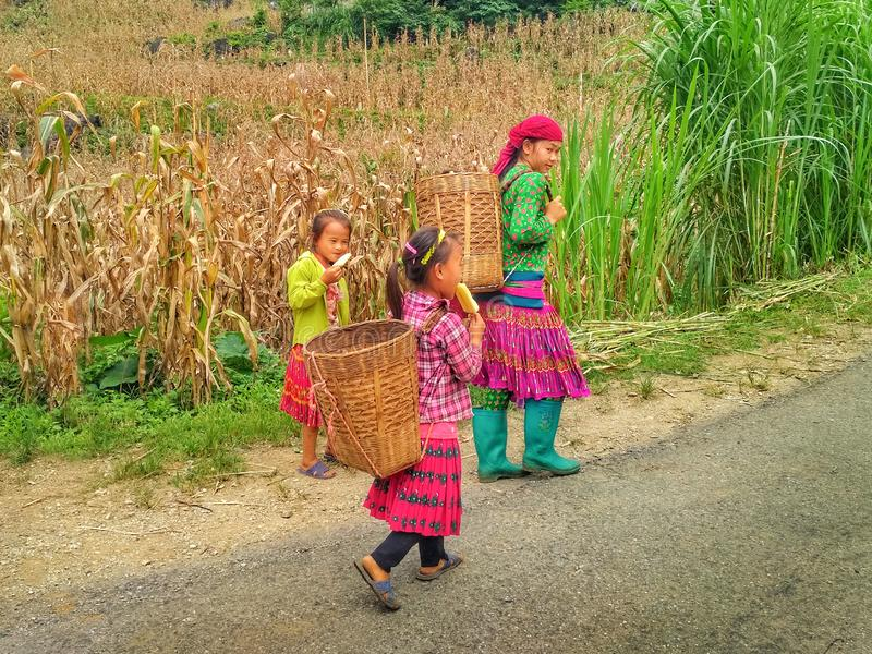 Local kids in traditional colorful clothes in mountains stock image