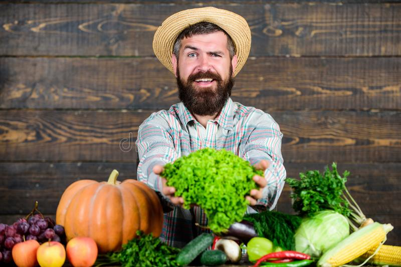 Local market. Locally grown crops concept. Buy vegetables local farm. Typical farmer guy. Farm market harvest festival stock photography