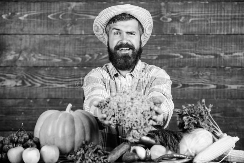 Local market. Locally grown crops concept. Buy vegetables local farm. Typical farmer guy. Farm market harvest festival. Man mature bearded farmer hold royalty free stock image