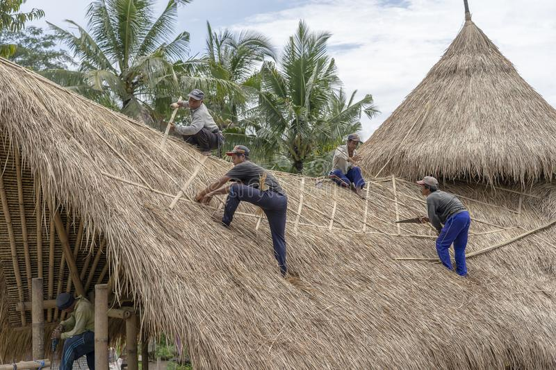 Local men fixing a new straw roof in Ubud, island Bali, Indonesia. Construction workers working on a building thatch roof. UBUD, BALI, INDONESIA - MARCH 24, 2019 stock image