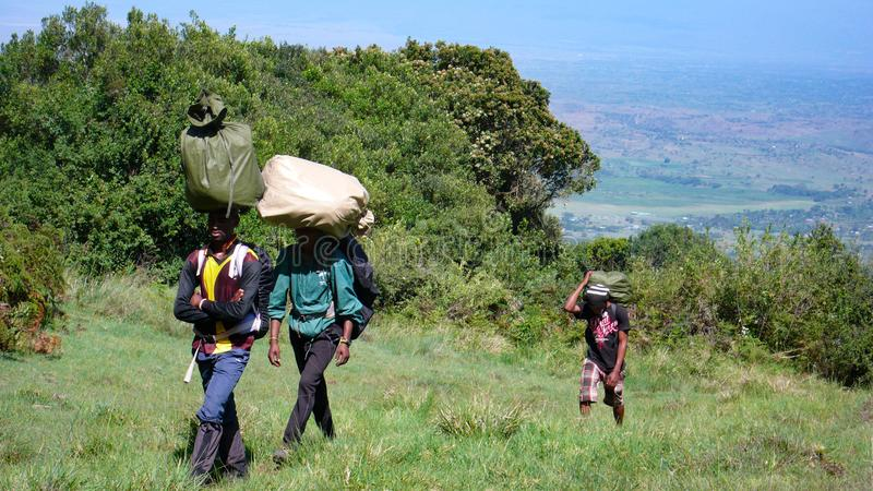 Local porters carrying gear and equipment hike towards the summit of Mount Meru in Arusha National Park in Tanzania. Arusha National Park, Kilimanjaro Province stock photo