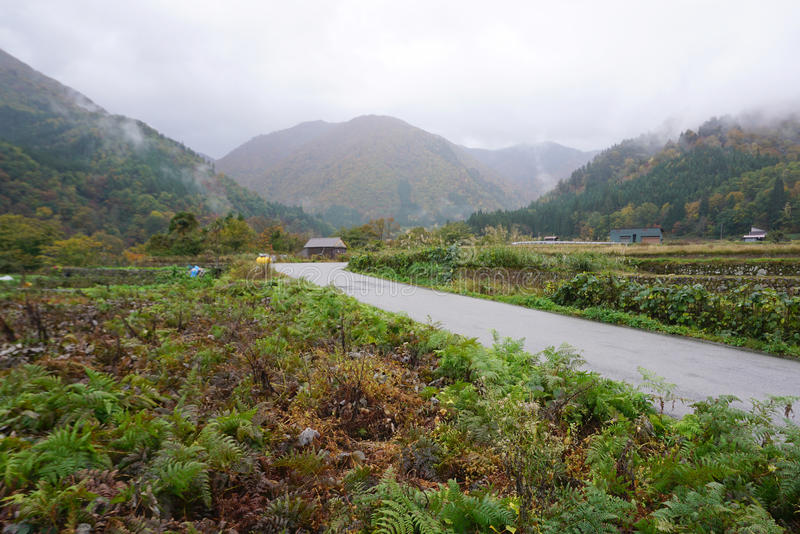 Local road with agriculture farm along in Shiragawago village. In Japan stock photos