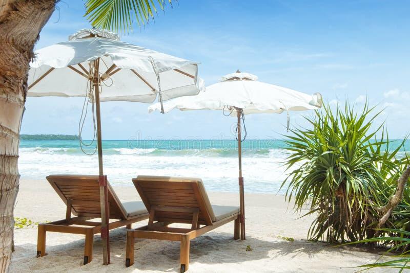 Local tropico imagens de stock royalty free