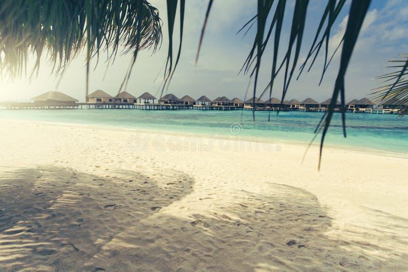 Località di soggiorno dei bungalow dell'acqua alle isole fotografia stock