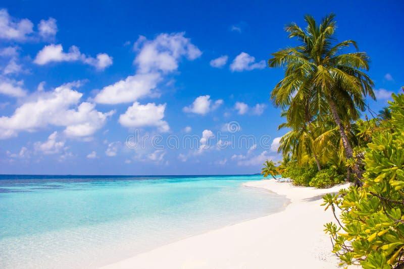 Località di soggiorno in Maldive, l'Eden di luna di miele di VIP su terra immagine stock libera da diritti