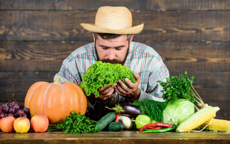 Locally grown crops concept. Buy vegetables local farm. Typical farmer guy. Farm market harvest festival. Man mature stock photos