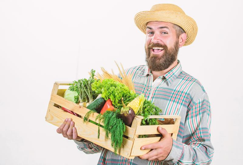 Locally grown foods. Farmer lifestyle professional occupation. Buy local foods. Farmer rustic bearded man hold wooden. Box with homegrown vegetables white royalty free stock images