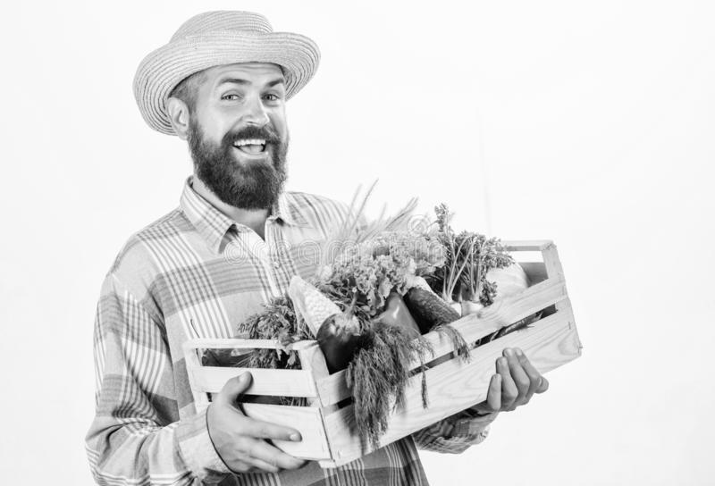Locally grown foods. Farmer lifestyle professional occupation. Buy local foods. Farmer rustic bearded man hold wooden. Box with homegrown vegetables white stock photo