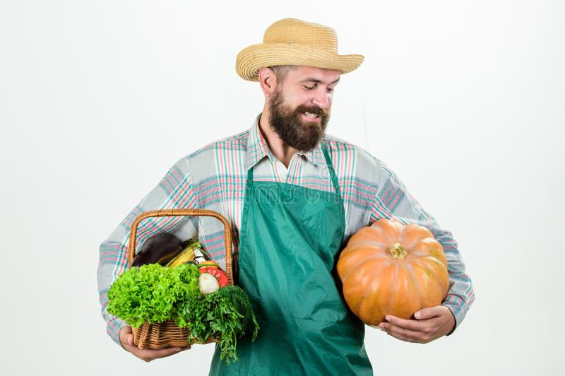 Locally grown foods. Local farm. Farmer lifestyle professional occupation. Farming and agriculture. Farmer wear apron. Hold pumpkin white background royalty free stock photos