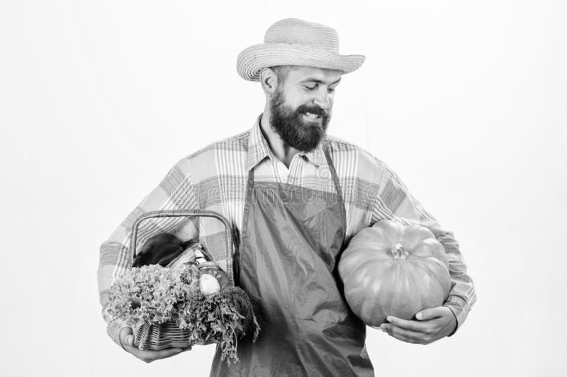 Locally grown foods. Local farm. Farmer lifestyle professional occupation. Farming and agriculture. Farmer wear apron. Hold pumpkin white background stock images