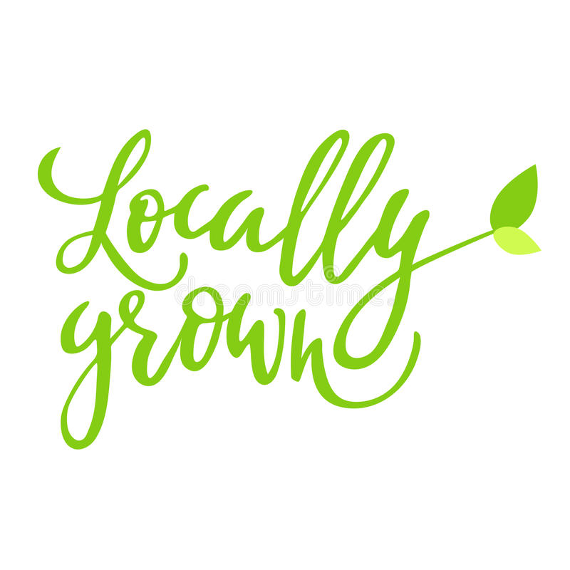 Locally grown hand drawn logo, label, with leaf and sprout. Vector illustration eps 10 for food and drink, restaurants. Locally grown hand drawn logo, lable royalty free illustration